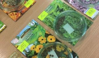 Uczymy się rozpoznawać nasiona roślin